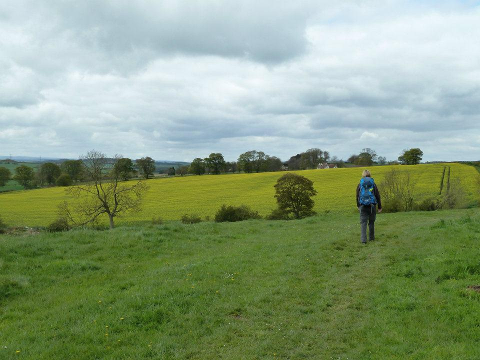 Hadrian's Wall Path 2012